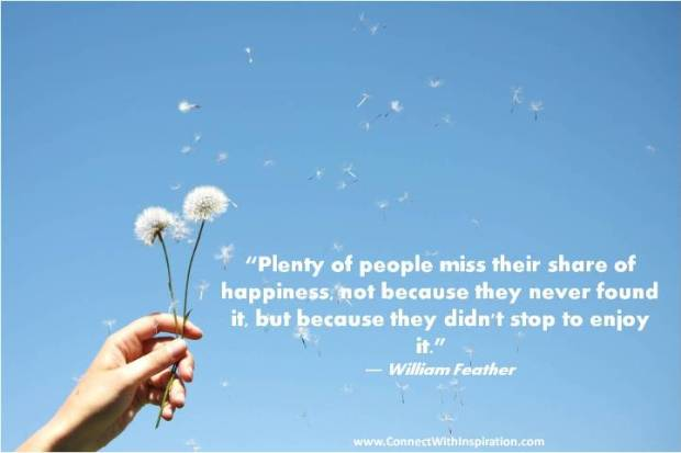 Happiness-Plenty-Of-People-Miss-Their-Share-Of-Happiness-Quote-PQ-0031-2012-R